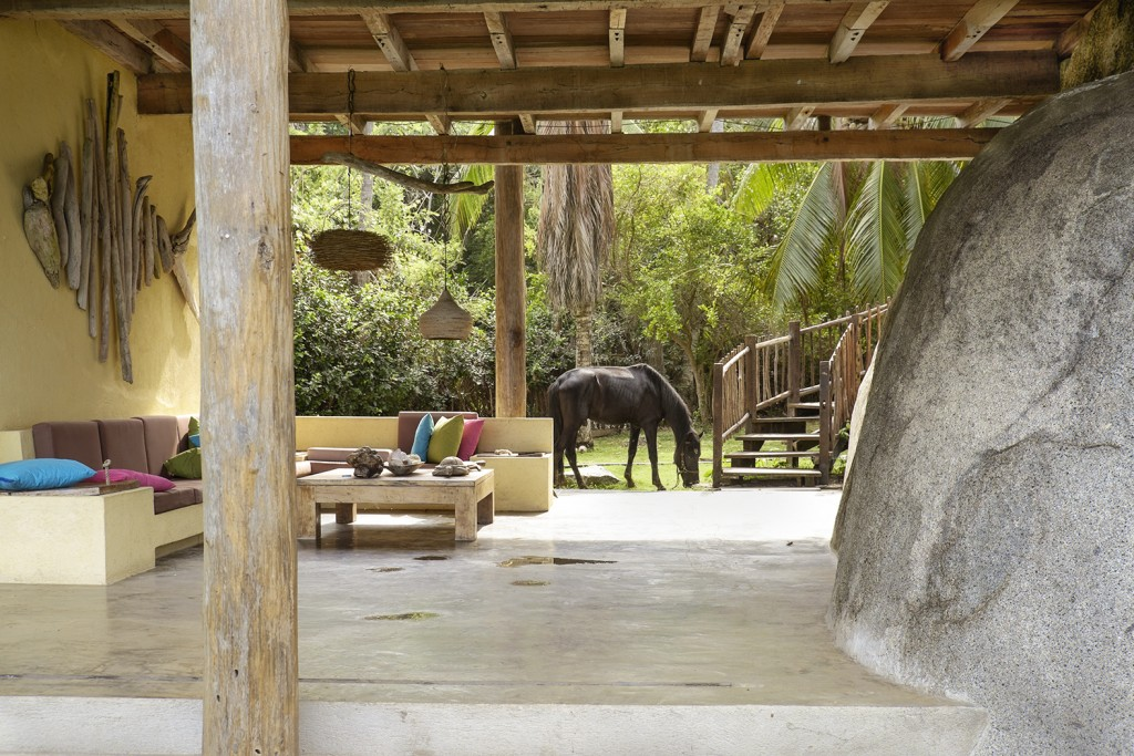 A horse grazed on the lawn of a hostel inside Tayrona National Natural Park in Santa Marta, Colombia.